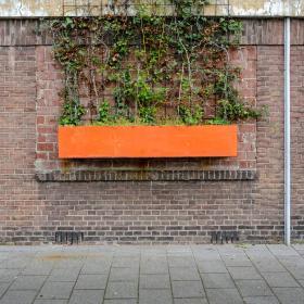 Maarten-Vromans